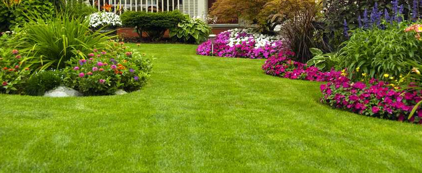 D&S Garden & Landscaping Services